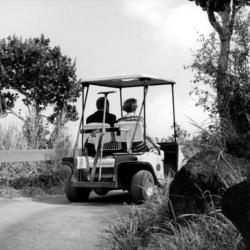 Allin And Ann In Golf Cart